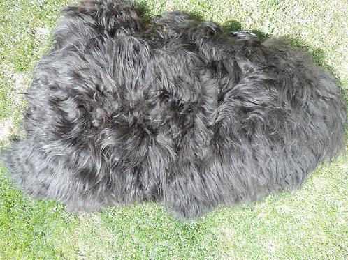 Icelandic Sheepskin Rug - Black-Brown /Black