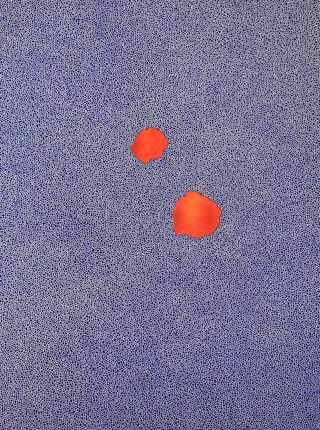 Sans titre -  2020 - 30 x 40 cm - encre