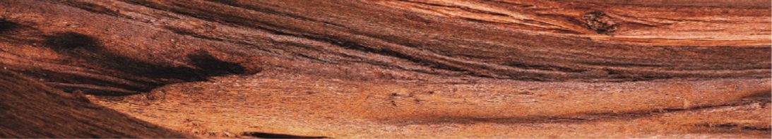 New wood background.png