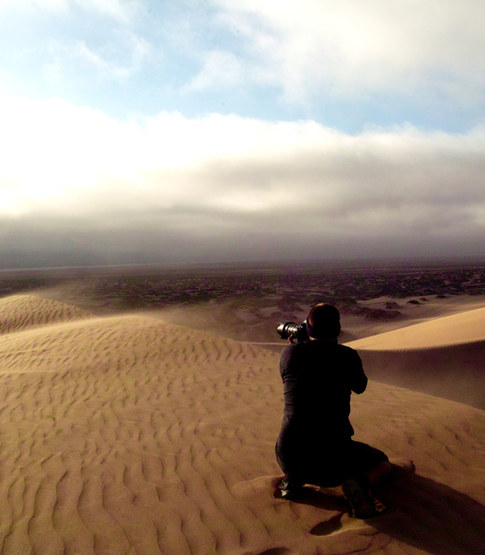 Dune belt in the late afternoon