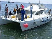 Catamaran Cruise at Walvis Bay