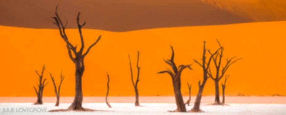 Namibia-216 (1).jpg