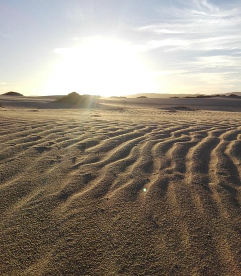 Sunrise dune tour.