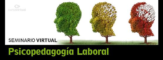 slide-psicopedagogía-VI.png
