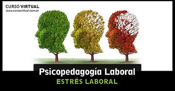 psicopedagogía-laboral-VI.png