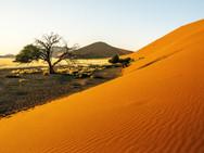 namibia-646901.jpg