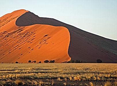 dune-4061016_edited.jpg