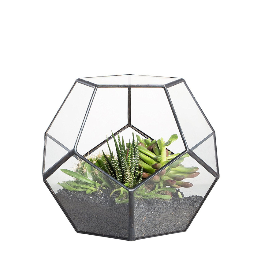 Pentagon planter Large plant pot for Succulent Cacti Fern Moss. Plant terrarium
