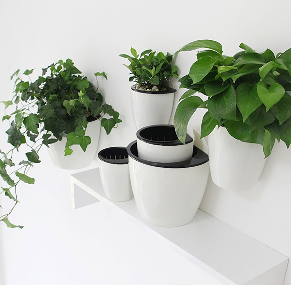 Living wall. Vertical Hanging Planter. Feature wall ideas. Wall decoration ideas.