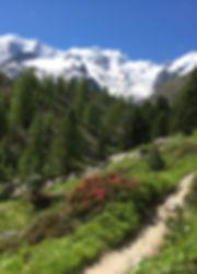 Boval Hütte Piz Bernina Biancograt