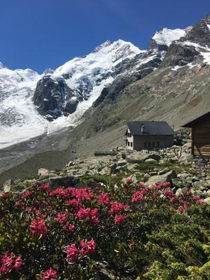 Sommer Hütte 4