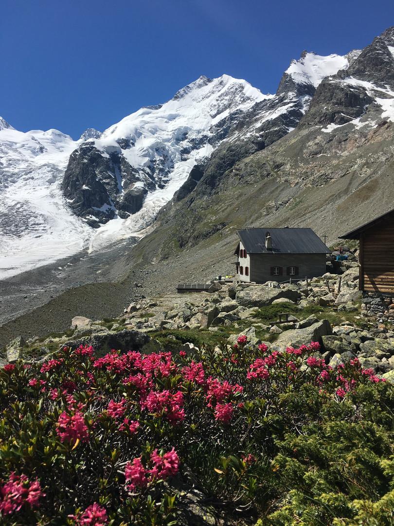 Hütte_Panorama_Bernina_Biancograt_Prievl