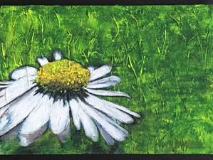 'Daisy' by Sue Trickey 2020