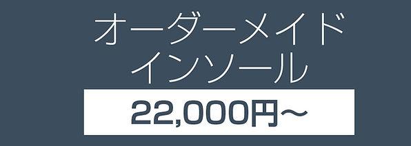 insole_price1.jpg