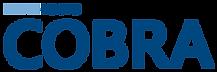 The Benelogic COBRA logo