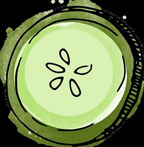 Watercolor Cucumber