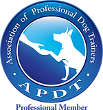 APDT logo