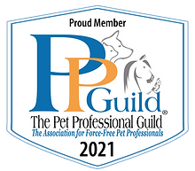 PPG Member Badge 2021_white with tag blu