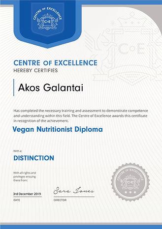 Diploma Vegan Nutritionist Akos Galantai