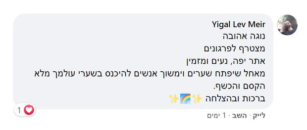 Yigal Lev Meir.png