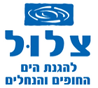 ארגון ״צלול״