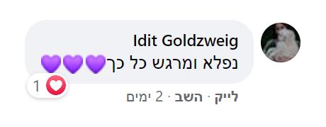 Idit Goldzweig.png
