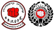 המרכז הגלילי ללימודי קראטה והגנה עצמית
