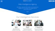 Web Intelligency
