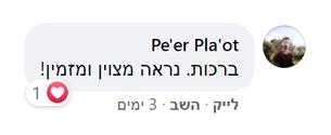 Peer Plaot.png