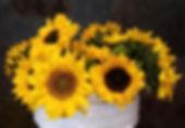 1st 2 Sun bunches (1)x.jpg