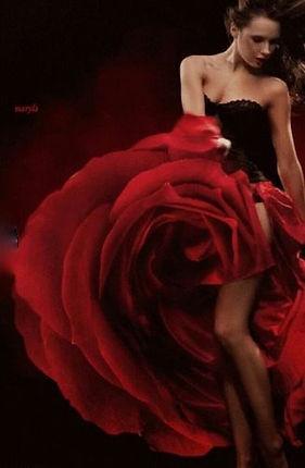 rose-woman 7.jpg