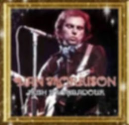 Van Morrison Irish Troubadour.jpg
