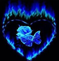 heart-rose.jpg