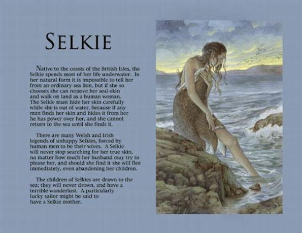 selkie poster.jpg