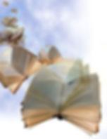 flying books 1.jpg