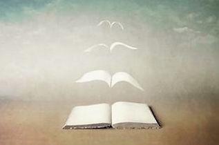 winged-book 2.jpg