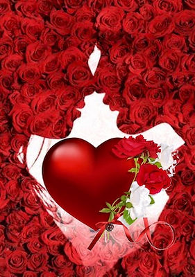 rose-heart kiss.jpg