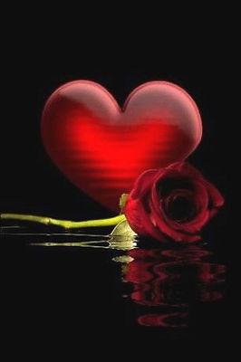 heart rose 1.jpg