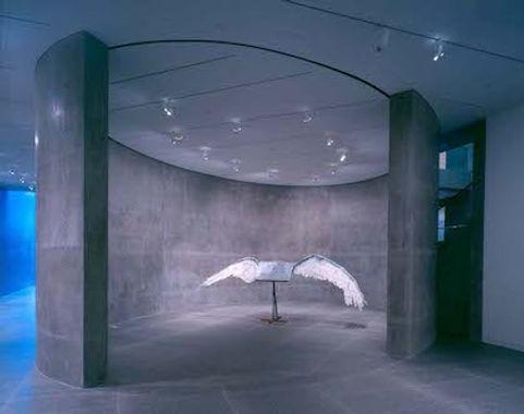 library-book wings.jpg