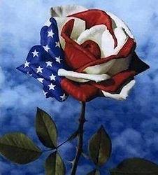 Independence Day rose-flag.jpg