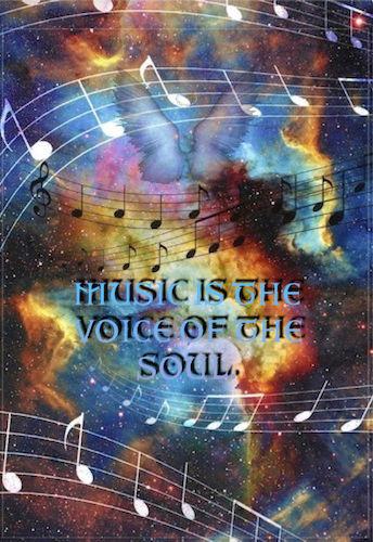 music voice of soul meme.jpg
