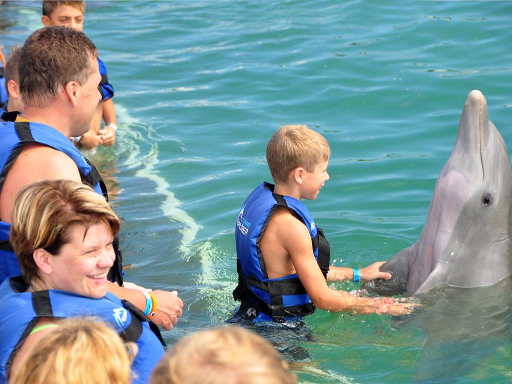 Dolphin Explorer desde $ 99.000