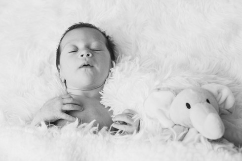 Evelynn Newborn-7.jpg