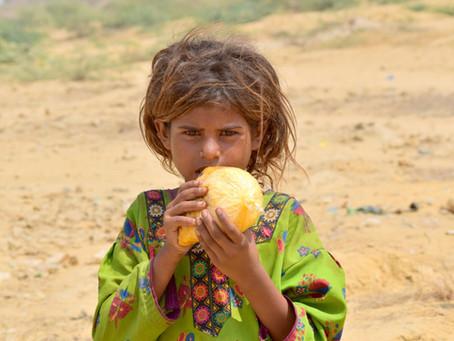 HOPE Distributes 300 Biryani Meals in Kachra Kundi