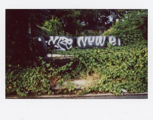 Nize/Newer