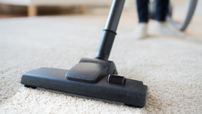 Hair in Your Carpet? Top 3 Vacuums