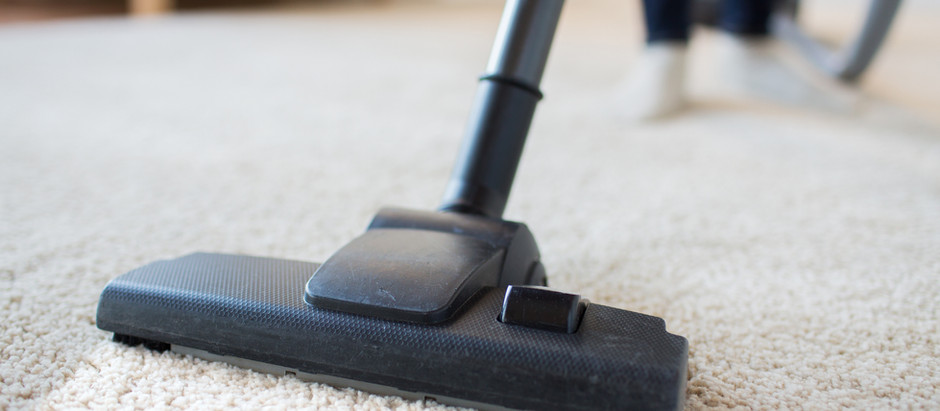 Should I Hire Professional Carpet Cleaners?