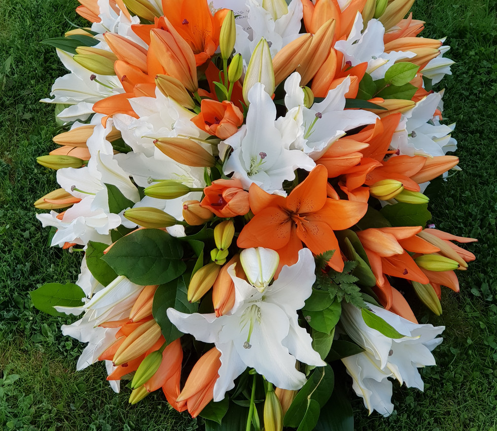 lilly casket tribute.jpg