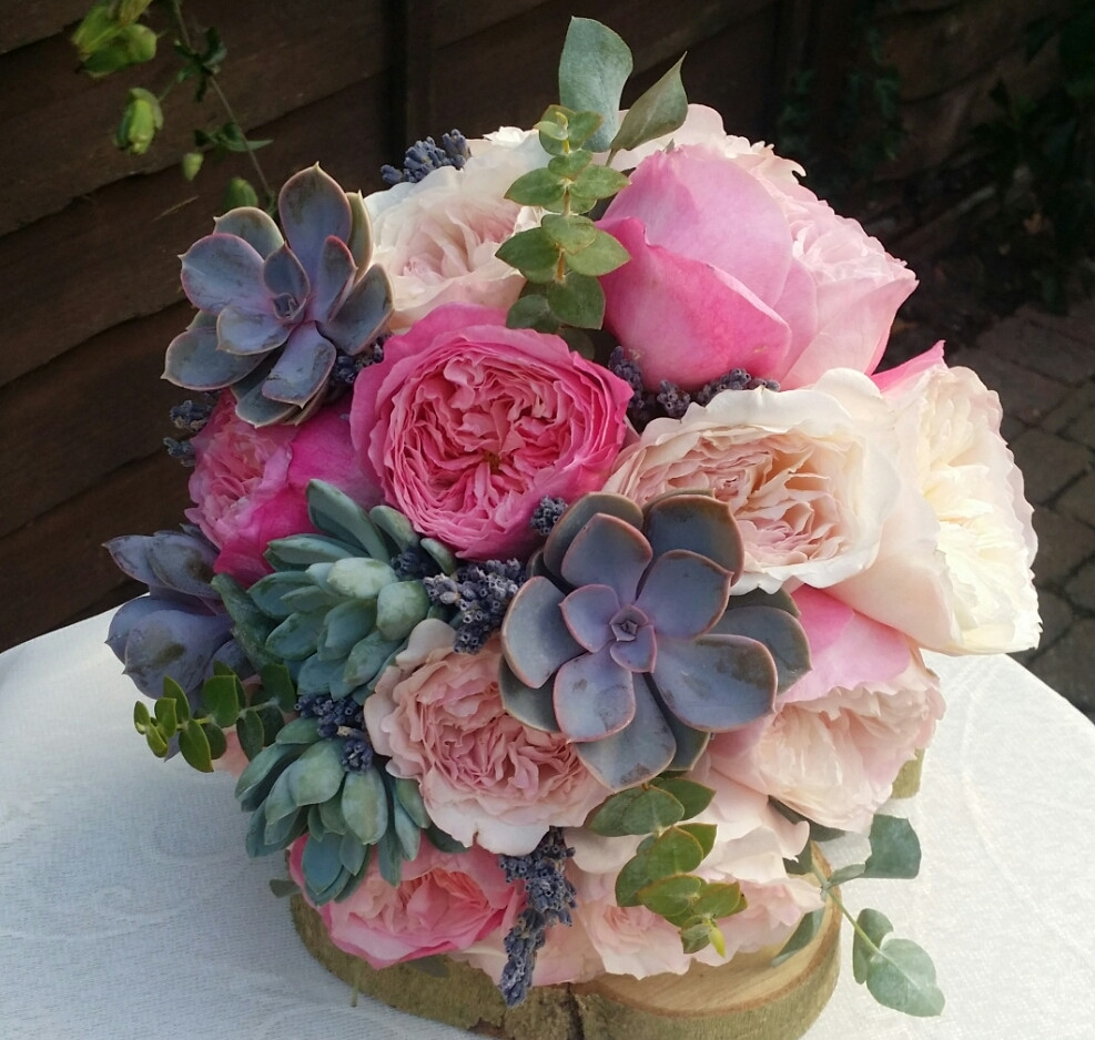 succulents and roses.jpg