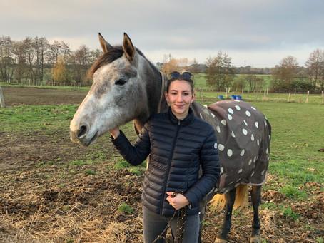 Toute l'équipe de l'élevage du Croissel vous souhaite une bonne année 2019 !